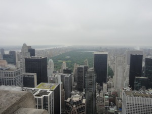 View from Top of the Rock. Photo attribution: Fanny Littmarck
