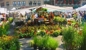 ny_union_square_greenmarket_farmers_market
