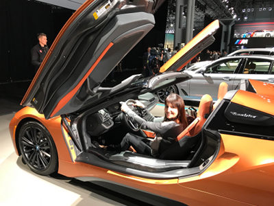 More Than Cars And Lots Of Surprises At Car Show In NYC - Car show javits