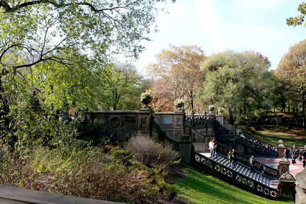 Photo Journal - Central Park - View